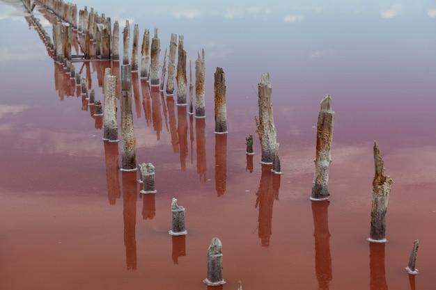 Ciel bleu et nuages reflétés sur la surface de l'eau du lac salé rose. la couleur unique du lac est donnée par la microalgue halophile dunaliella salina. le sel rose est utilisé en cosmétologie et en médecine populaire.