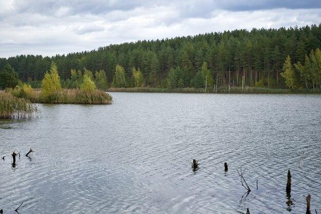 Ciel bleu nuageux de rivière de forêt d'automne
