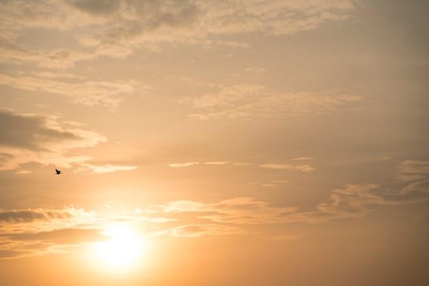 Ciel coucher de soleil doré