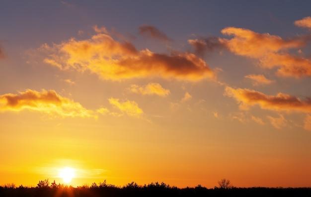 Ciel coucher de soleil orange ardent et arbres. beau ciel.