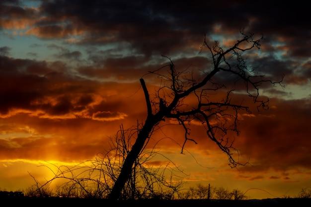 Le ciel dans le relief jour et nuit