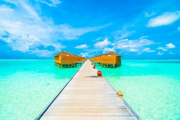 Ciel exotique arbre station maldive