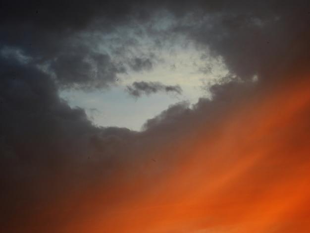 Ciel gris et orange avec des oiseaux
