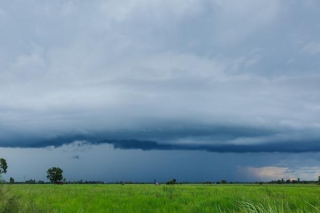 Ciel et nuages avec le nuage orageux de la pluie sur le champ de riz vert.