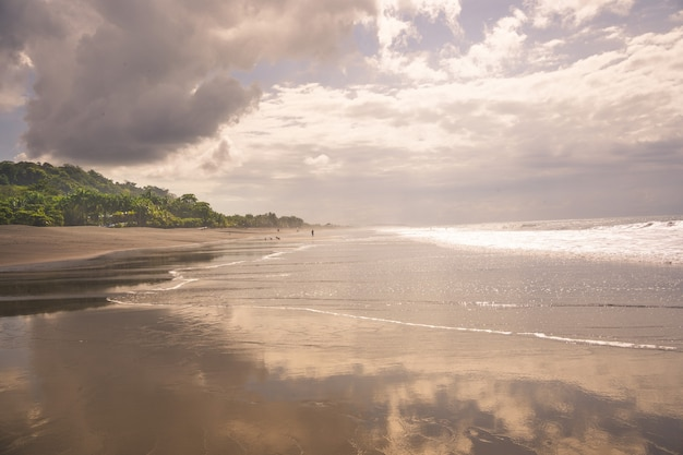 Ciel nuageux sur une plage avec des palmiers en arrière-plan