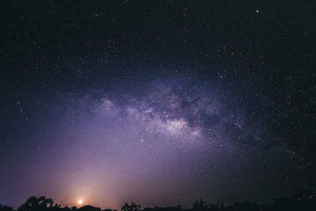 Ciel la nuit avec beaucoup d'étoiles sur la forêt, magnifique galaxie brillante avec un ciel sombre