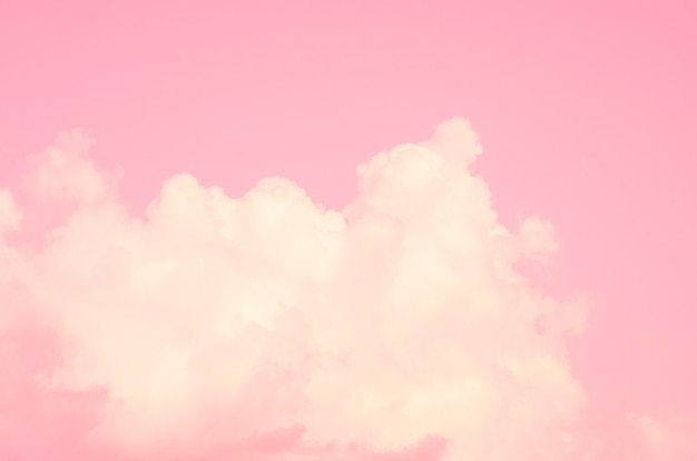Ciel rose avec fond flou