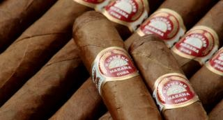 Cigares, cubains, bâton
