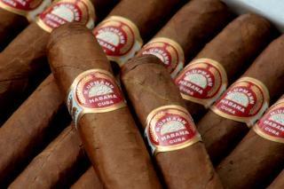 Cigares, savoureux
