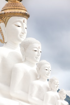 Cinq bouddha