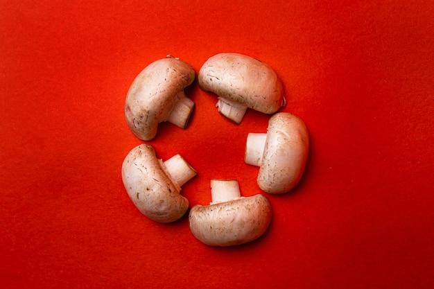 Cinq champignons blancs sur fond rouge