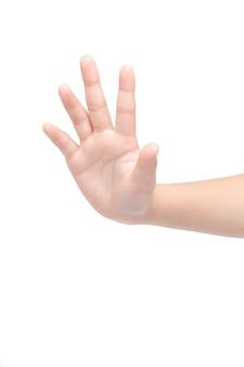 Cinq doigts
