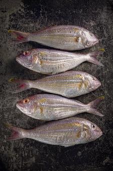 Cinq poissons brèmes de mer crus sur fond métallique, vue du dessus