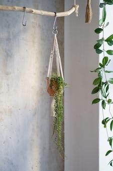 Cintre en macramé de coton fait à la main suspendu à une branche de bois sur un mur gris à la maison