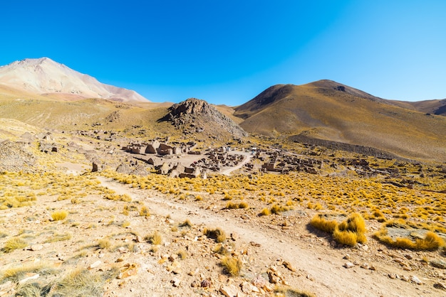Circuit sur les hauts plateaux andins, sud de la bolivie
