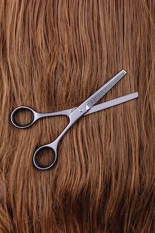Des ciseaux en acier reposent sur la vague des cheveux bruns soyeux