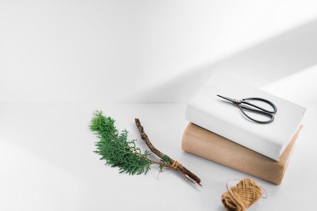 Ciseaux sur deux livres blanc et marron avec brindille de thuya et bobine sur fond blanc