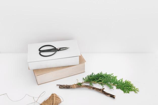 Ciseaux sur deux livres avec brindille de thuya et bobine sur fond blanc