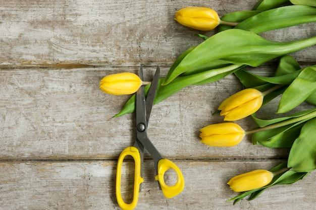 Ciseaux est coupé fleur de tulipe jaune sur fond de bois. vue de dessus sur le lieu de travail avec outil de serre et fleurs de printemps. matériel de décoration, fleuriste, décorateur, concept fait main.