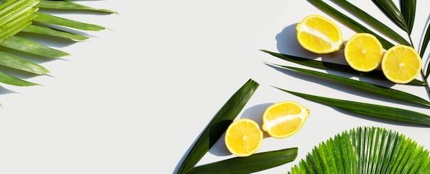 Citron frais avec feuille de palmier sur fond blanc.