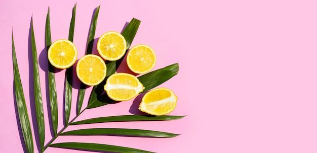 Citron frais avec feuille sèche de palmier sur surface rose