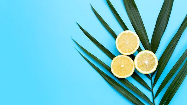 Citron frais avec des feuilles de palmiers tropicaux sur fond bleu.