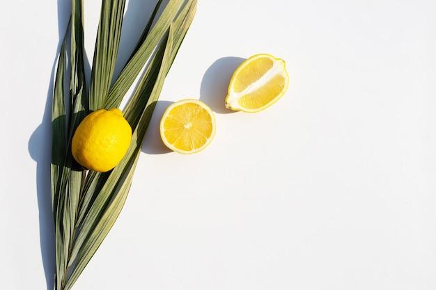 Citron frais avec des feuilles sèches de palmier sur une surface blanche
