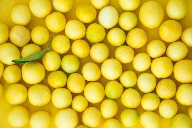 Citron frais avec des feuilles