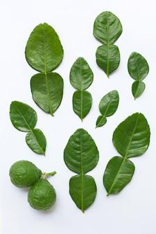 Citron kaffir bergamote avec feuilles ingrédient frais aux herbes isolé sur fond blanc.