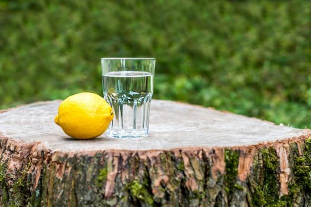 Le citron avec un verre d'eau