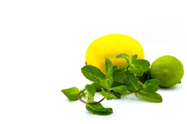 Citron vert frais, citron et menthe isolés sur blanc