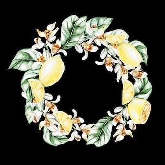 Citrons, fleurs et feuilles, couronne d'aquarelle. fruits. illustration