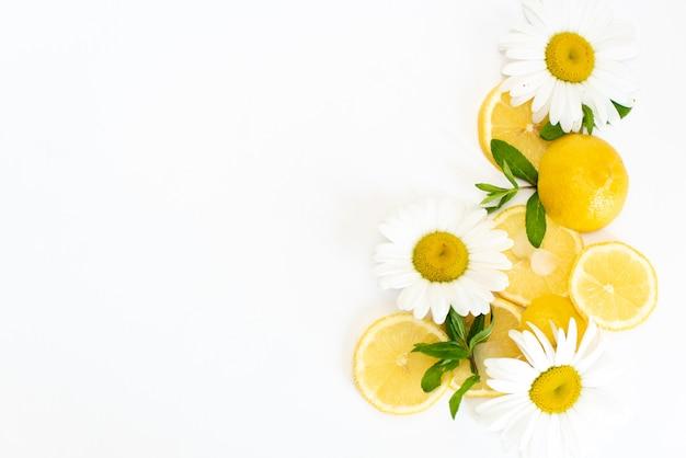 Citrons jaunes avec des fleurs de camomille fraîches sur une plaque blanche