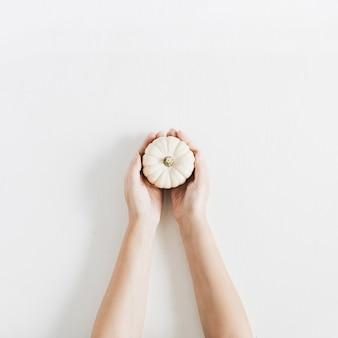 Citrouille blanche dans les mains de la femme sur fond blanc. mise à plat, vue de dessus