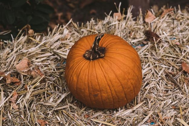 Une citrouille sur un bloc de paille dans une scène rurale d'halloween