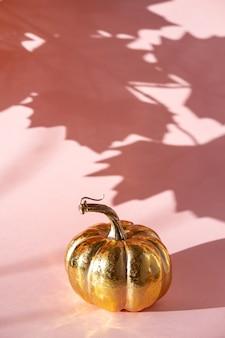 Citrouille dorée avec une ombre de feuilles d'érable sur un fond rose.