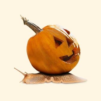 Citrouille effrayante sur fond jaune, la nuit de la peur. design moderne avec l'escargot. halloween, vendredi noir, cyber lundi, ventes, concept d'automne. flyer pour votre publicité. collage d'art contemporain.