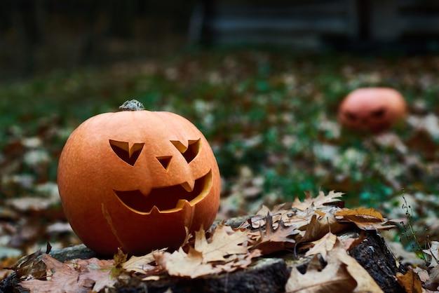 Citrouille d'halloween dans les feuilles d'automne