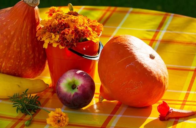 Citrouille orange dans le jardin à l'automne.