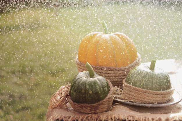 Une citrouille orange et deux citrouilles vertes sur la table en bois décorée de toile de jute et de corde. sous la pluie. en plein air.
