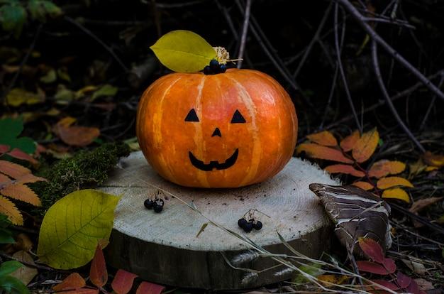 Citrouille orange pour halloween avec une tasse dans la forêt sur un bois