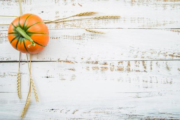 Citrouille orange sur table avec du blé