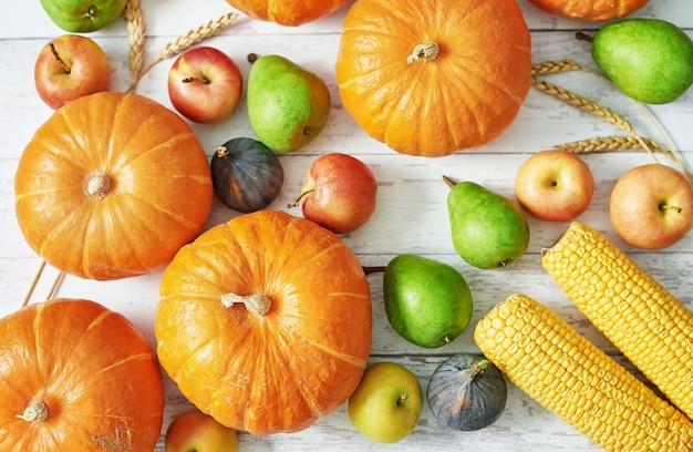 Citrouille de récolte d'automne. fruits et légumes de récolte d'automne. citrouilles, pommes, poires, maïs sur table. table de thanksgiving halloween ou saison automnale. carte de voeux. cuisine d'automne.