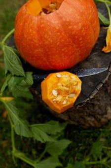 Citrouille sur souche dans le bois, jardin, extérieur, près du couteau, avant de sculpter pour halloween, prépare jack o'lantern. décoration pour fête, vue de dessus, gros plan, vue d'en haut, espace copie
