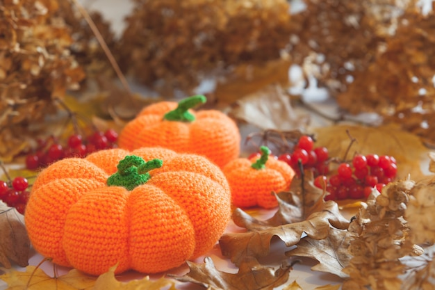 Citrouilles amigurumi tricotés et des chauves-souris sur halloween