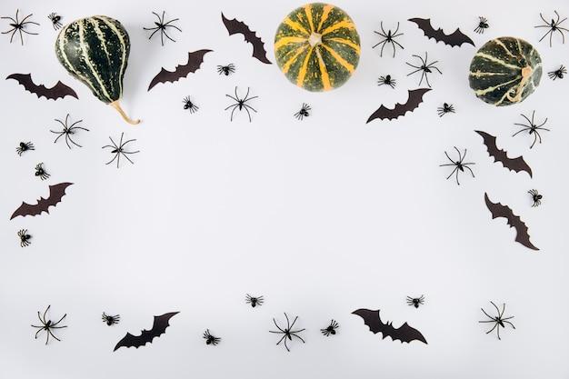 Citrouilles, araignées et chauves-souris sur blanc