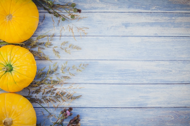 Citrouilles d'automne et fleurs séchées