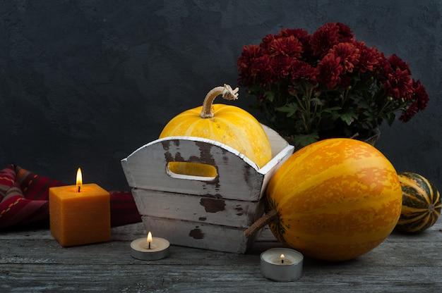 Citrouilles d'automne sur fond minable