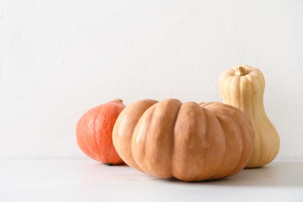 Citrouilles biologiques sur fond blanc récolte d'automne pour le jour de thanksgiving ou la fête d'halloween