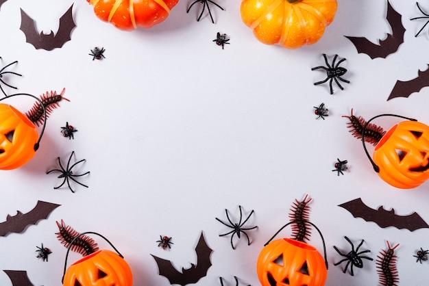 Citrouilles, chauves-souris, araignées, mouches et mille-pattes sur gris.